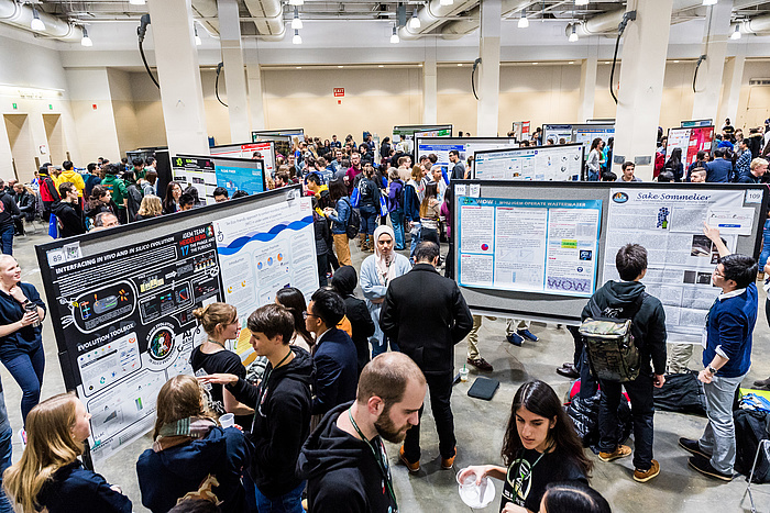 Students from all over the world deeply involved in conversation and in their studies; numerous posters on stands in a big room.