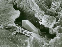 Ein Quarzkristall vergrößert durch ein Mikroskop