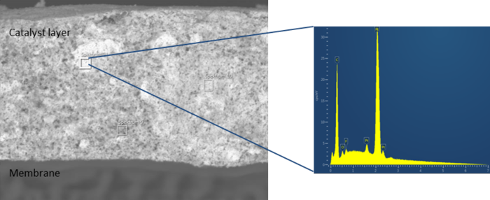 On the left side there is a grey membrane at the bottom and a grey Catlyst layer at the top. On the right side a part of it is analyzed. The picture on the right is a diagram. The y-axis goes from 0 to 30, the x-axis from 0 to 7. A yellow area shows the deflections.