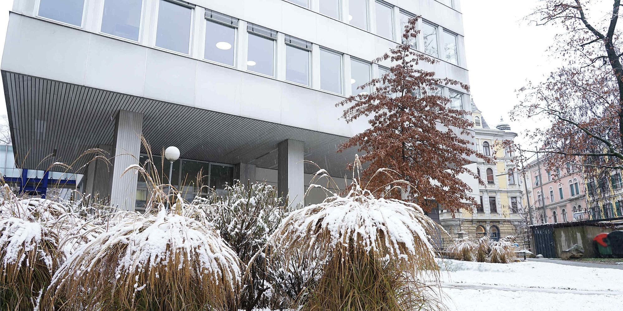 verschneite Bibliothek