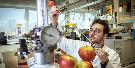Niklas Pontesegger steht in einem weißen Labormantel im Labor und hält eine Pipette. Vor ihm liegen drei Äpfel.