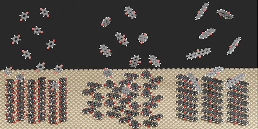 Grafik zeigt Moleküle und Oberflächenstrukturen