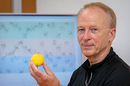 TU Graz researcher with a brain model