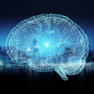 Grafische Darstellung eines Gehirns in Blau und Schwarz