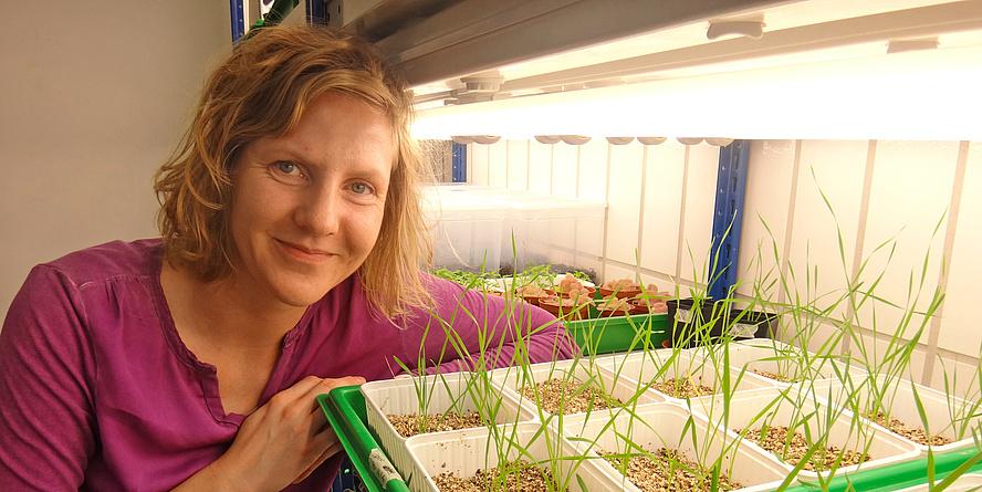 TU Graz-Umweltbiologin Christin Zachow mit Jungpflanzen im Labor.
