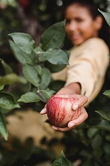 ein Junge hält einen Apfel in der Hand