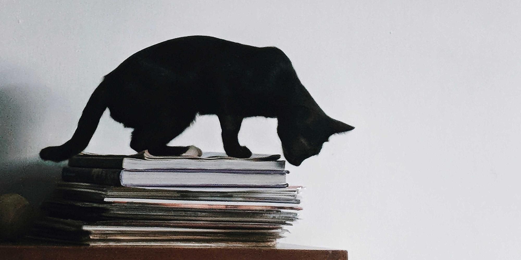 schwarze Katze auf einem Stapel Zeitschriften