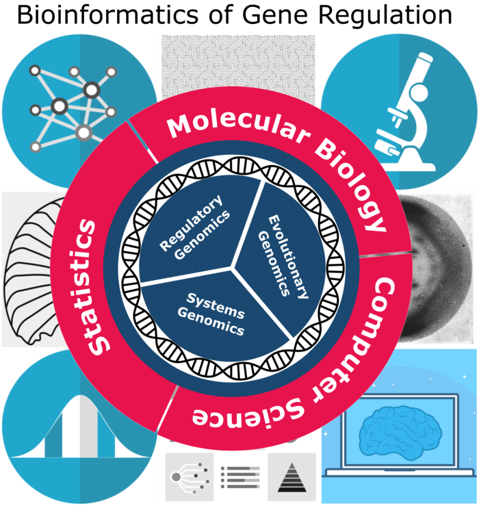 """A circle in three equal parts - they say """"Regulatory Genomics"""", """"Evolutionary Genomics"""" and """"System Genomics"""". Around it is helix. Again around it is a circle in three equal parts - they say """"Molecular Biology"""", """"Computer Sience"""" and """"Statistics"""". Around it are several pictures of a computer, a microscope and similar things."""