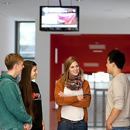 Vier Menschen stehen in einem Halbkreis und diskutieren. Bildquelle: Lunghammer – TU Graz