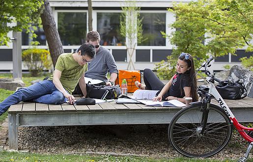 Drei Studierende lernen im Freien
