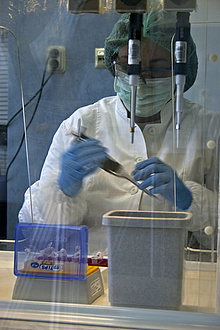 A forensic expert analysing DNA in a laboratory.