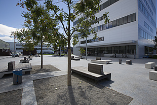 Square with trees and benches, behind it a modern white building.