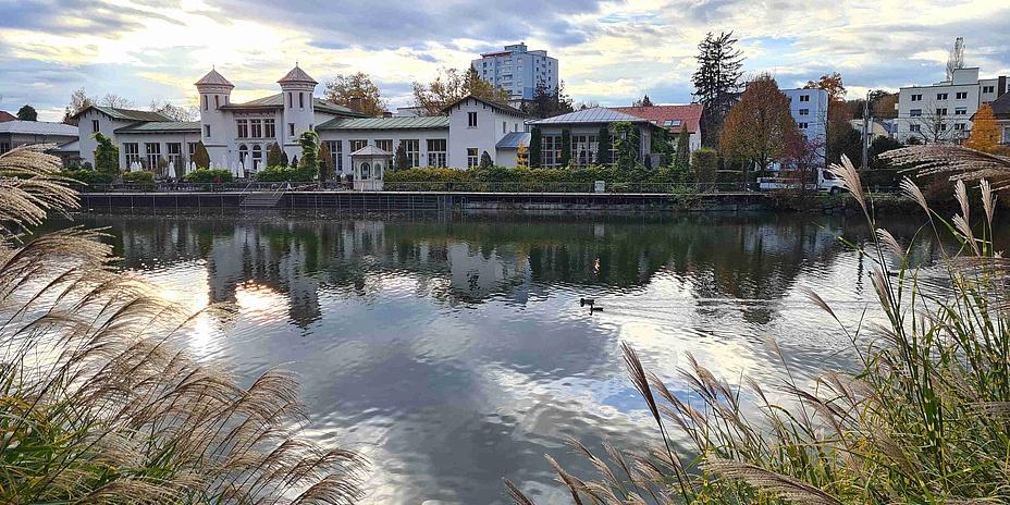 Blick über einen von Gräsern gesäumten Teich auf Häuser am anderen Ufer.