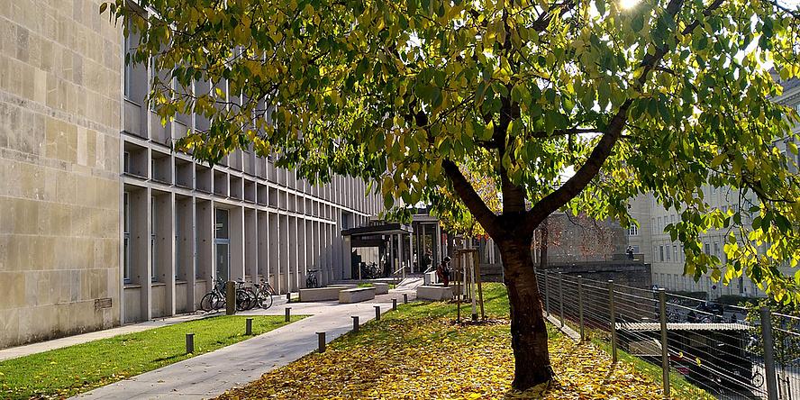 Eingang der Fachbibliothek NAWI mit Baum und Herbstlaub