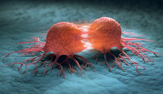 Grafische Darstellung einer sich teilenden Zelle