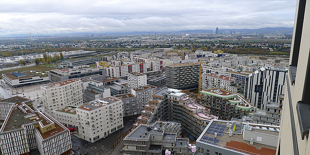 Buildings of a city in top view.
