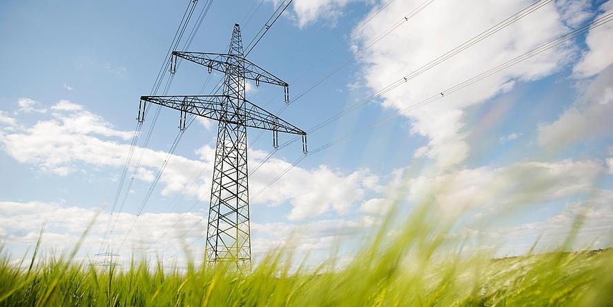 Strommast auf grüner Wiese