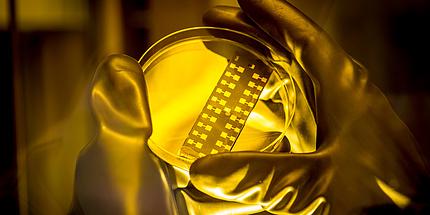 Das Licht ist gelb und strahlt auf ein Testplättchen, das von zwei Händen in Laborhandschuhen gehalten wird.