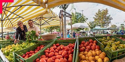 Frau Siegmund und Herr Leitner umgeben von frischem Gemüse auf dem Kaiser-Josef-Markt