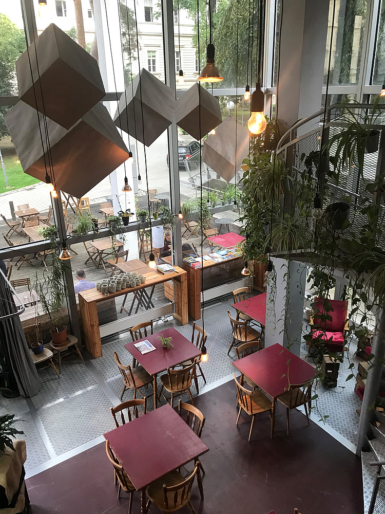 Inside view of Café CORK from the gallery on modern hanging lamps, hanging green plants and red tables and chairs made of wood on the first floor.