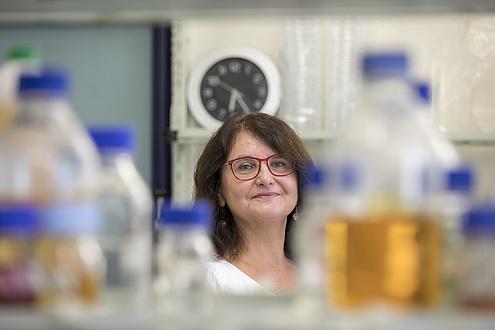 Eine Dame mit Brille blickt zwischen Laborutensilien durch ein Regal;