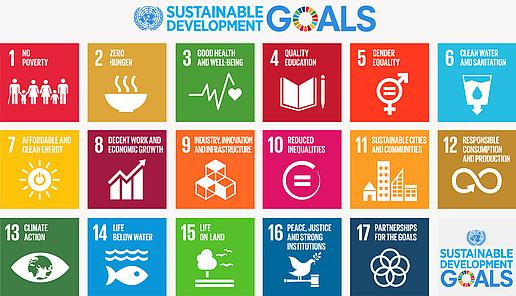 Universitäten und Nachhaltige Entwicklungsziele (UniNEtZ)