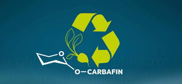 Carbafin - EU Project