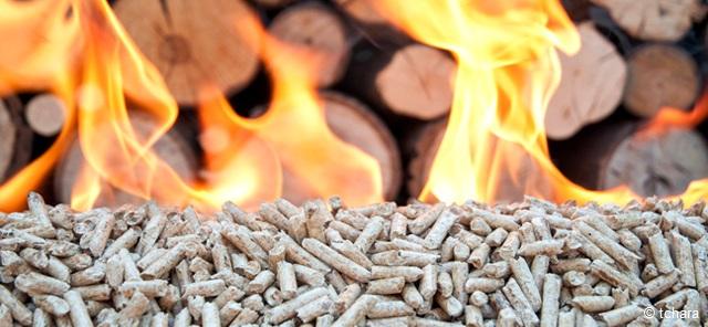 Therm. Energiesysteme & Biomasse